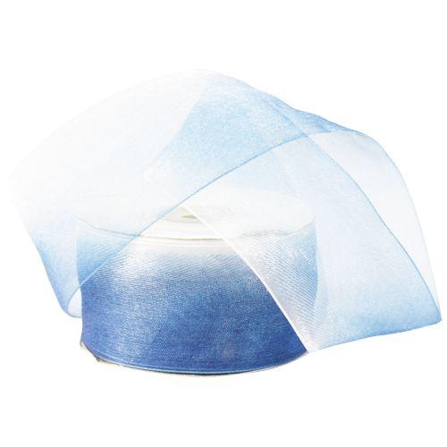 Ленты Лента капроновая двухцветная 4,0см (001/091 белый/синий) Цена указана за 10 см