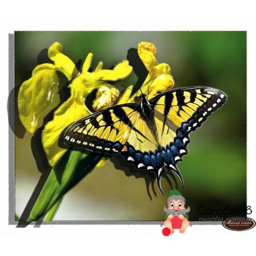 Папетроль Объемная картина Бабочка желтая 10*12